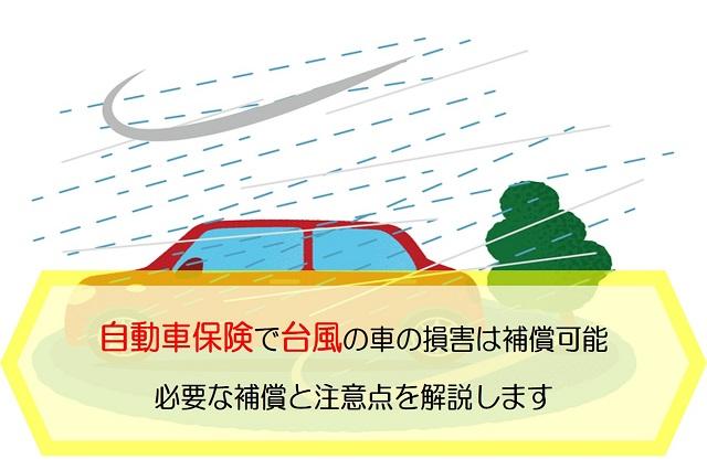 自動車保険 台風